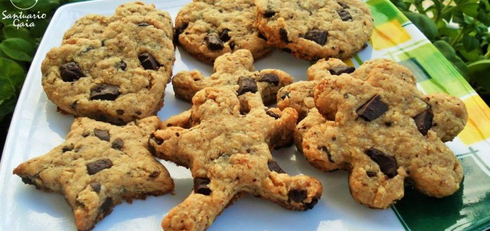 CookiesAvenaChocolate