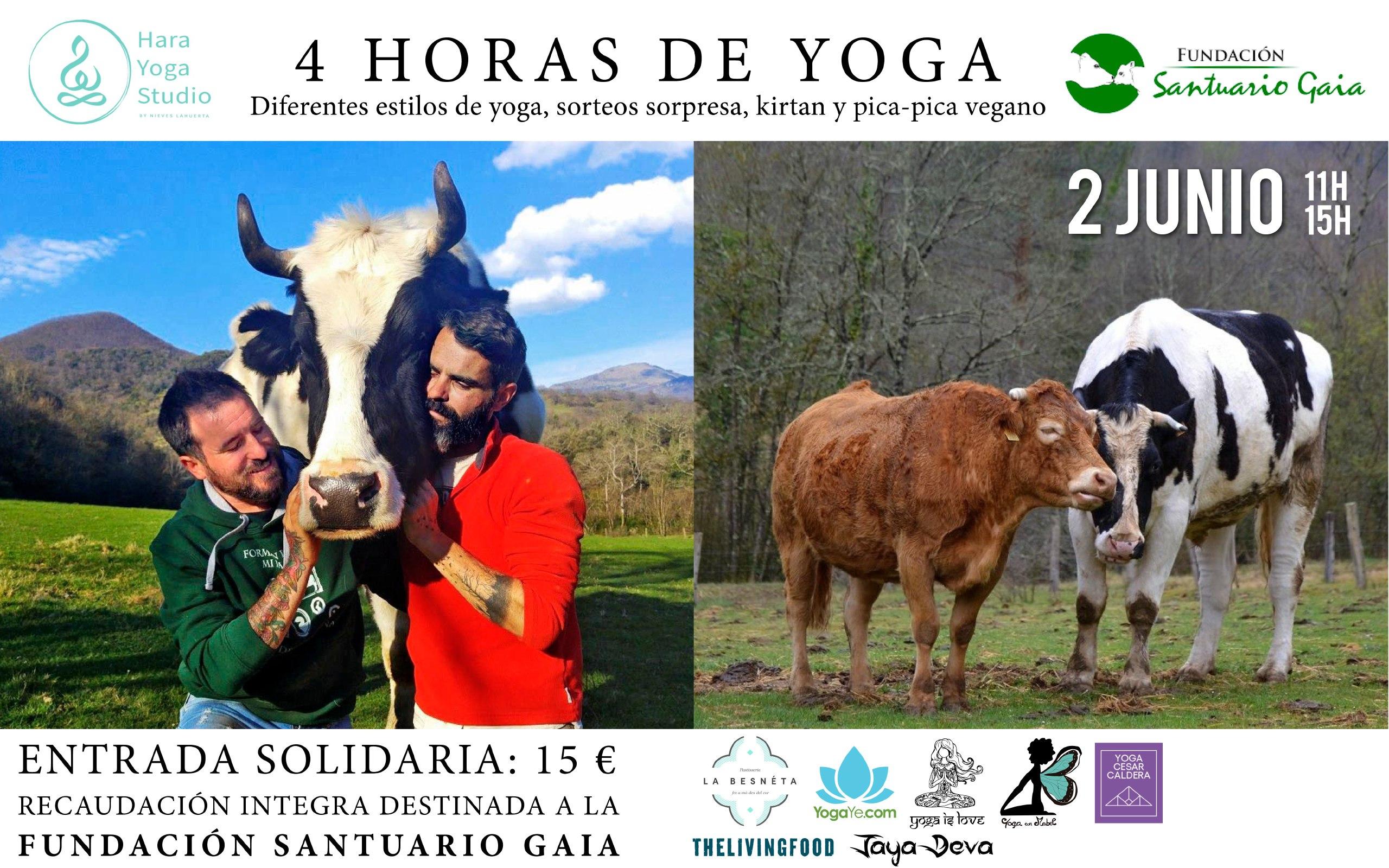 Yoga junio 2019