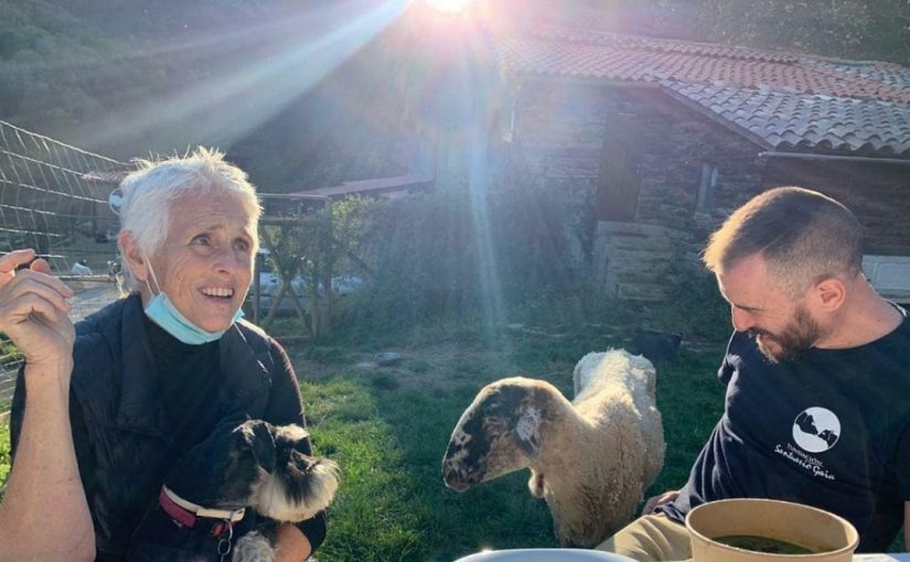Mercedes Mila Santuario Gaia Scott y mila