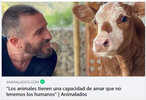 Animalados