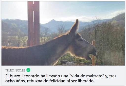 Leonardo_telecinco
